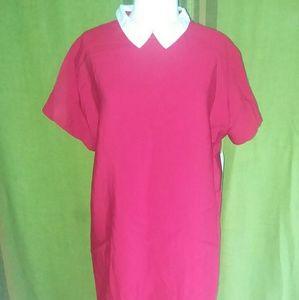 Kawaii Red Zara dress